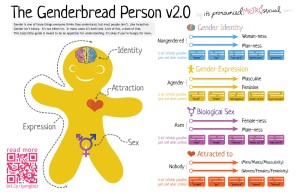 The Genderbread Person is useful to illustrate that gender identity, sexual orientation, etc., are different things, but there is danger in assuming that two different things are automatically entirely uncorrelated.